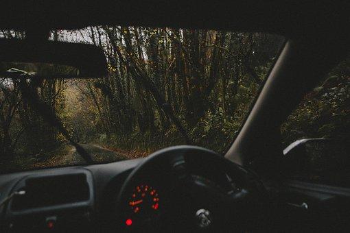 шофьорски курс цена